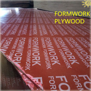 Film Faced Plywood Construction BB/CC Grade WBP Glue pictures & photos