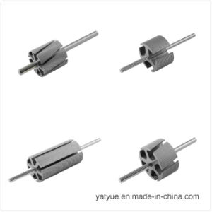 Top Quality Micro Motor Parts Rotor 8p pictures & photos