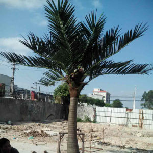 Garden Home Decoration Wholesale Plastic Outdoor Artificial Coconut Palm Tree pictures & photos