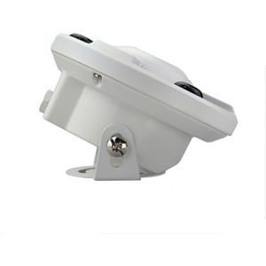 2.1mm Lens Color CCD Dome IR Fish Eye CCTV Camera pictures & photos