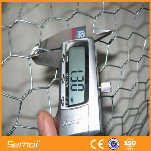 Galvanized Hexagonal Wire Netting Chicken Mesh pictures & photos