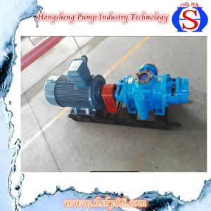 Double Screw Pumps for Viscous Liquid with SGS pictures & photos