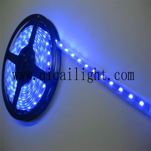 China Supplier Flexible LED Strip Lighting Stick 0.2W 2835 SMD LED Flexible LED Strip pictures & photos