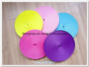 450d Color Polypropylene Webbing for Textile pictures & photos