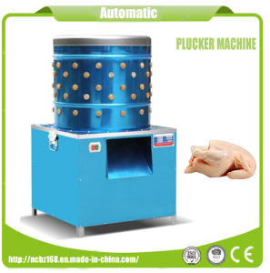 Poultry Defeathering Electric Automatic Poultry Plucker Machine with Ce Certificate pictures & photos