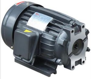 Oil Pump Hydraylic Motor with Flange (manufacturer since 1985)