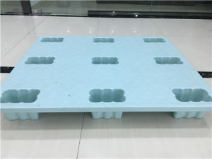 Flat Pallet Custom Packing Pallet Cargo Plastic Pallet Made and Sold Directly by Factory for Plastic Pallet pictures & photos