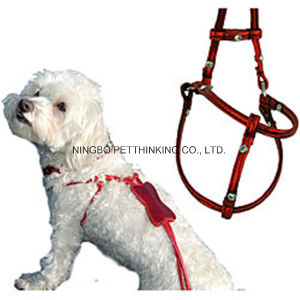 Colorful Leather Pet Step in Harness, Dog Products pictures & photos