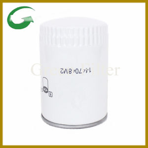 Oil Filter in Engine or Truck or Combine (1447048M2) pictures & photos