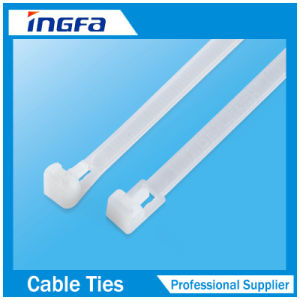 Nylon Cable Tie with Stainless Steel Inlay for Easy Operation pictures & photos