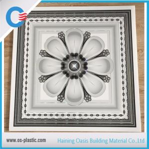 New Color for 2FT * 2FT Sri Lanka PVC Ceiling Panel Ceiling Board pictures & photos