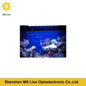 Dimmable and Programmable WiFi Remote Control Fish Tank LED Aquarium Light pictures & photos
