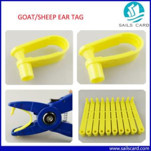 Sheep Goat Ear Tags Without RFID pictures & photos