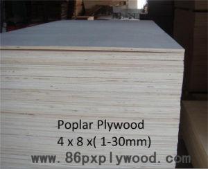 Poplar Plywood Full Poplar Plywood From China Factory -Plywood