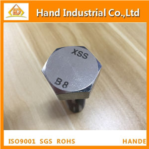 Stainless Steel ASME A193 B8 B8m M10X60 Hex Head Bolt pictures & photos