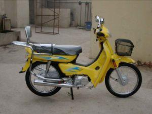 Motorcycle (HN110-2C-1)