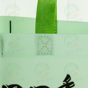 3D Auto-Forming Non-Woven Bag (My-072) pictures & photos