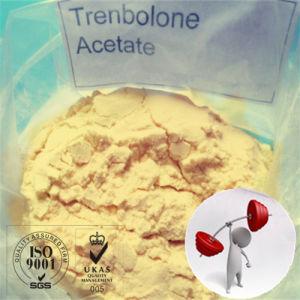 Tren a Bulking Cycle Bodybuilding Revalor-H Finaplix Trenbolone Acetate for Muscle Growth pictures & photos
