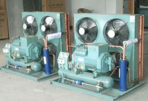 Bitzer Compressor for Cold Room (LLC) pictures & photos