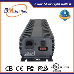 Wholesale High Quality Electronic Light Ballast for Indoor Growing Systems pictures & photos