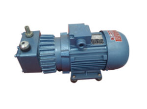 Dry Running Rotary Vane Vacuum Pump for Food Packaging Machine (TPL) pictures & photos