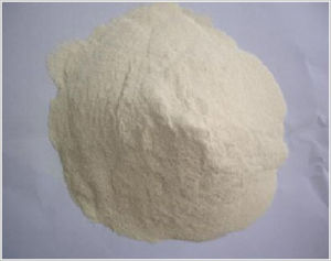 Dry Wheat Gluten