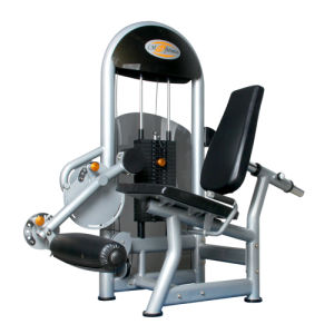 Fitness Equipment / Leg Extension