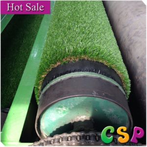 Qingdao Csp Artificial Lawn Company pictures & photos