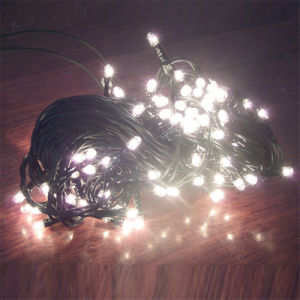 10m 100bulbs String Light Rice Light with Connector