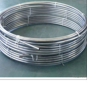 ASTM 316L Stainless Steel Coil Tube pictures & photos