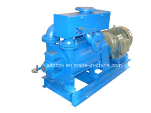 2be1 One/Single Stage Water/Liquid Ring Vacuum Pump (2BE1203, price) (bare pump)