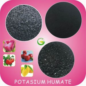 Organic Soluble Potassium Humate Fertilizer pictures & photos
