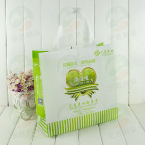 Auto-Formed Non Woven Bag Customised Design Promitional Packing (MY-050) pictures & photos