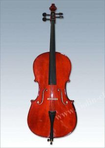 Solid Cello for Students-Gloss Finish pictures & photos