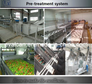 Fruits and Vegetable Cleaning Machine (PT) pictures & photos
