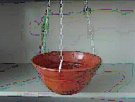 Biodegradable Flower Pot (BHD-9001)