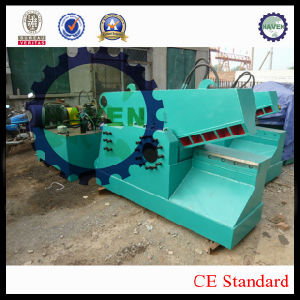 Q43-100 Hydraulic Alligator Shearing Machine pictures & photos