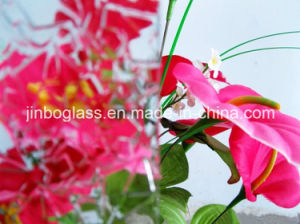 Tinted Colored/Coated/Reflective Float Tempered Window Glass pictures & photos