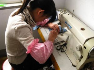 Professional Clothing Inspection Service pictures & photos