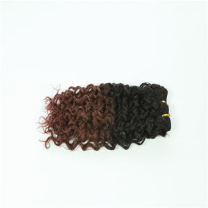 Curly Hair Ombre Color Indian Human Hair, Two Tone Human Hair Weave