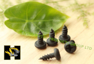 Screw/Self Tapping Screw with Balck Phosphate and Fine Thread pictures & photos