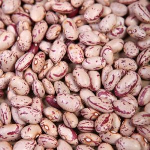 New Crop Oval Shape Light Speckled Kidney Bean pictures & photos