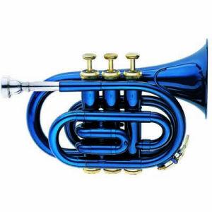 Wind Instruments (6500BL)