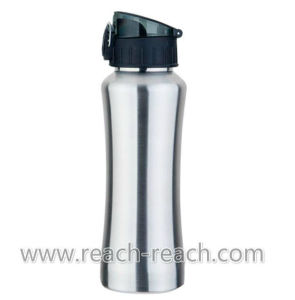 Stainless Steel Water Travel Bottle (R-9001) pictures & photos