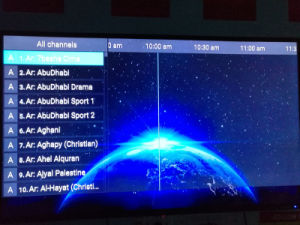 TV Box Hot Evdtv IPTV Box Amlogic S905X Quad-Core French Arabic Netherlands Turky UK Be*in Italy Kurd German India Ect Channels pictures & photos