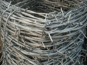 Galvanized Wire Fence Building Barbed Wire Fence Pictures pictures & photos