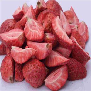 Hot Sale Strawberry Fruit Vacuum Freeze Drying Machine pictures & photos