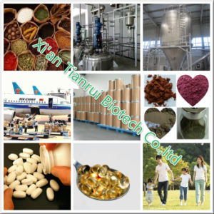 100% Natural-Best Quality Factory Olive Fruit Extract Powder/Olive Fruit Powder/Olive Juice Powder pictures & photos