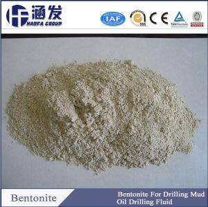 Natural Bulk Raw Bentonite in China pictures & photos