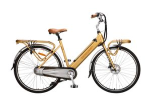 Electric Bike (city bike) pictures & photos